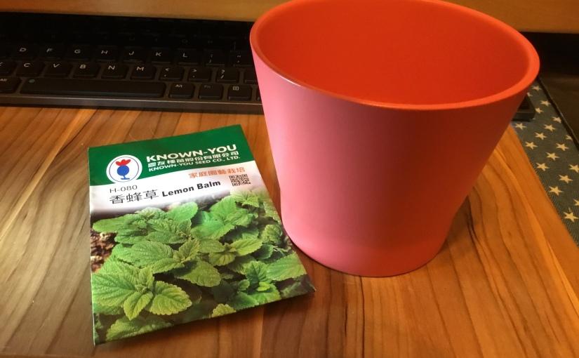 [日常]園藝Lv2-檸檬薄荷?香蜂草?| 本來是為了薄荷朱古力⋯⋯